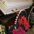 Гробы дорогие