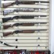Гладкоствольные самозарядные и инерционные охотничьи ружья