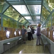 Морской тоннельный аквариум Батискаф Анапа