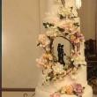 Свадебный тор